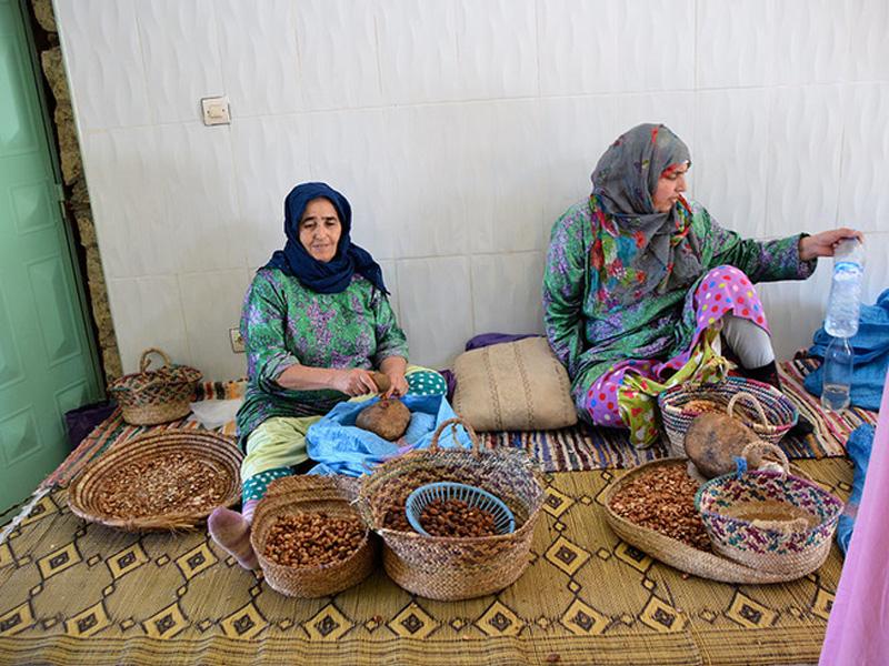 Óleo de Argan: o ouro líquido do Marrocos