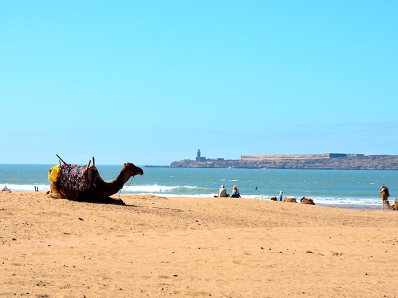 Essaouira – a linda cidade litorânea do Marrocos
