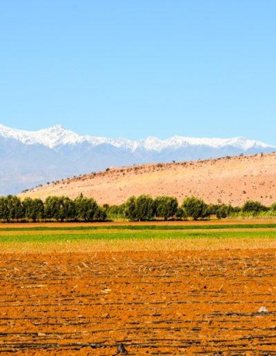 pelo-Marrocos21