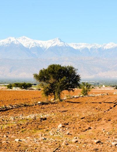 pelo-Marrocos38