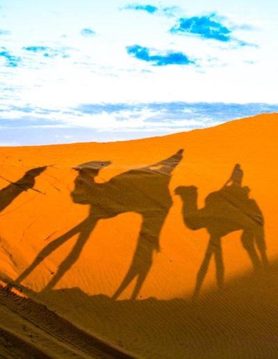 pelo-Marrocos60